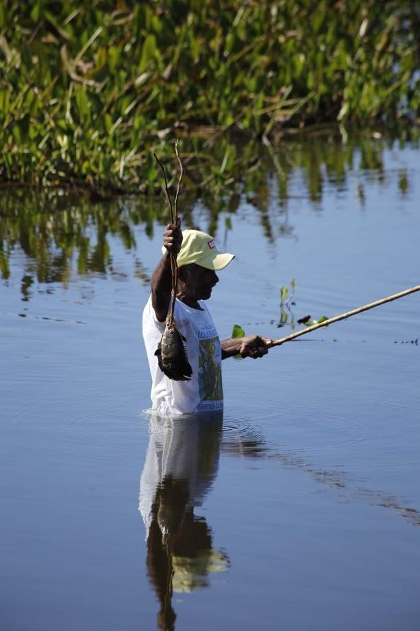 Pescador del Platanal, Brasil
