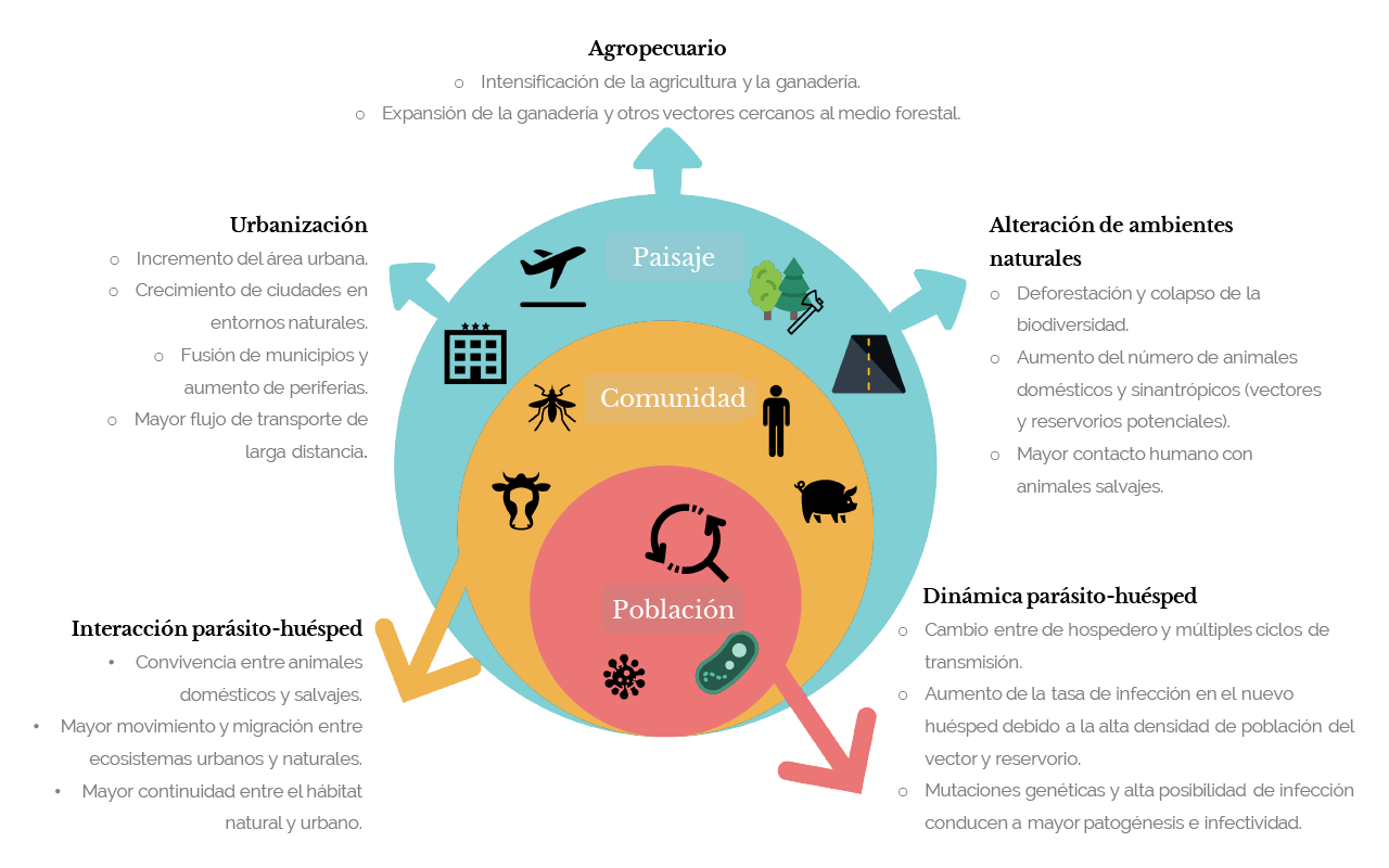 Diagrama interacción parásito-huesped y efectos en población, comunidad, paisaje (ES)