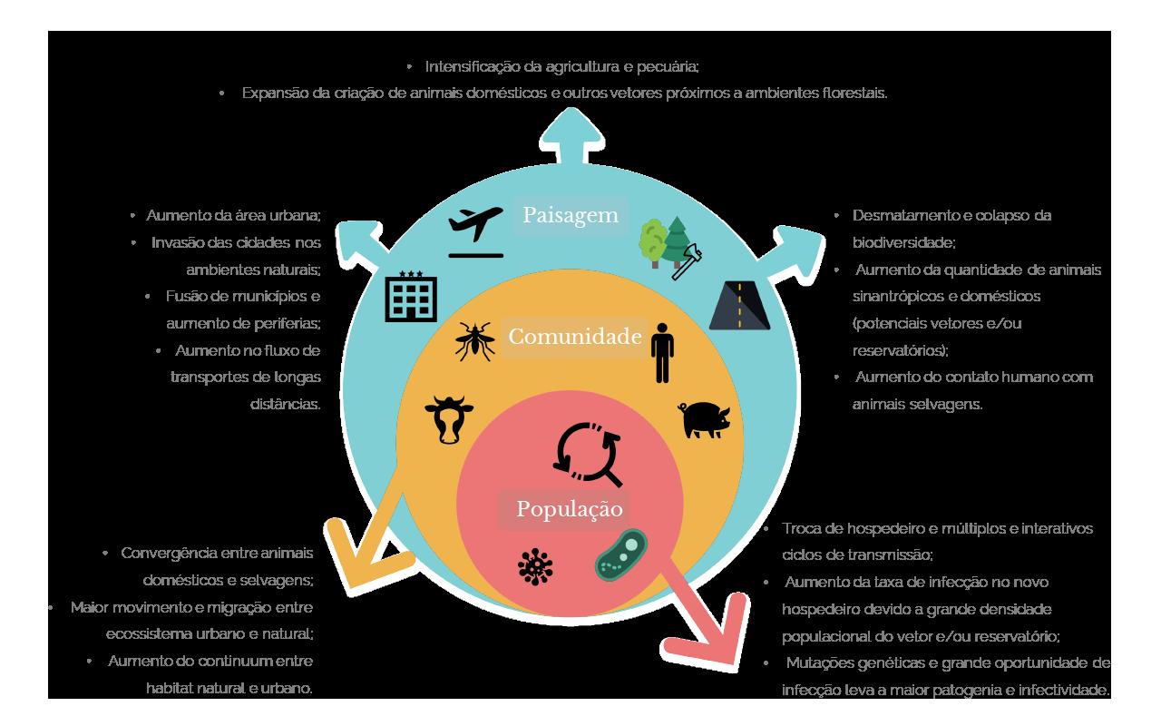 Diagrama de interação parasita-hospedeiro e efeitos em população, comunidade, paisagem (PT)