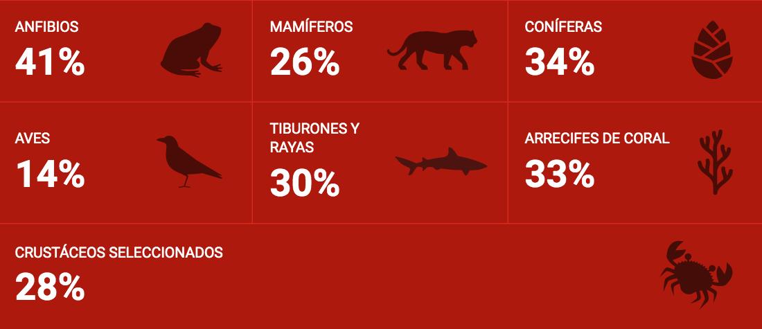 Especies en vía de extinción UICN, sep 13, 2020 (español)
