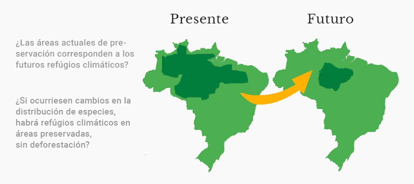 Preguntas que pueden responderse a partir de MDE (rótulos em español)