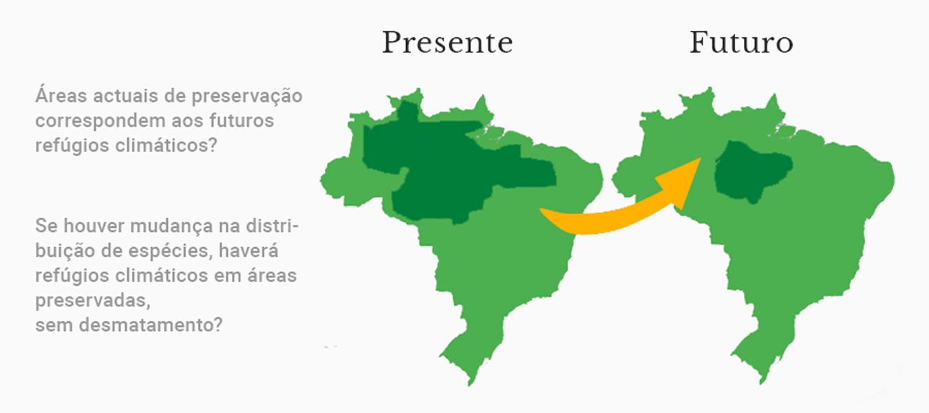 Perguntas que podem ser respondidas a partir do MDE (rótulos em portugués)