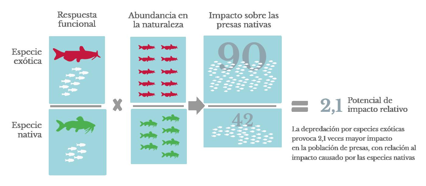 Gráfica: Índice  de potencial de impacto relativo