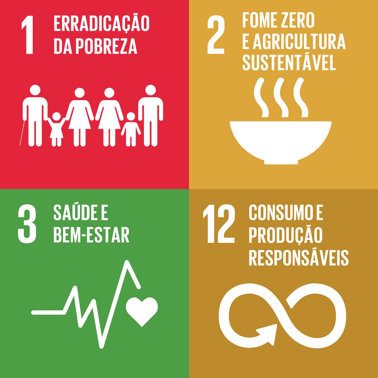 Ícones de ODS 1,2,3 e 12