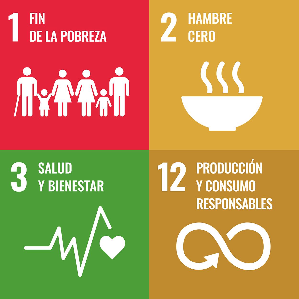 Íconos de ODS 1,2,3 y 12