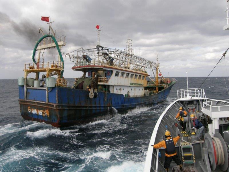 Barco patrullero pesquero japonés y barco pesquero ilegal chino.