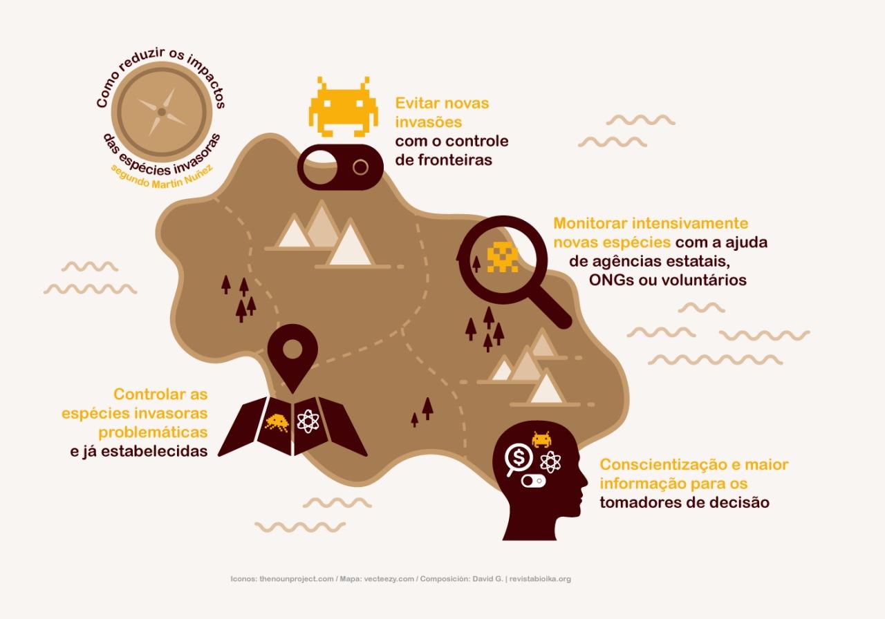 Infográfico: Como reduzir os impactos das espécies invasoras segundo Martín Núñez (português)