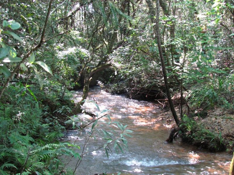 Arroyo rural