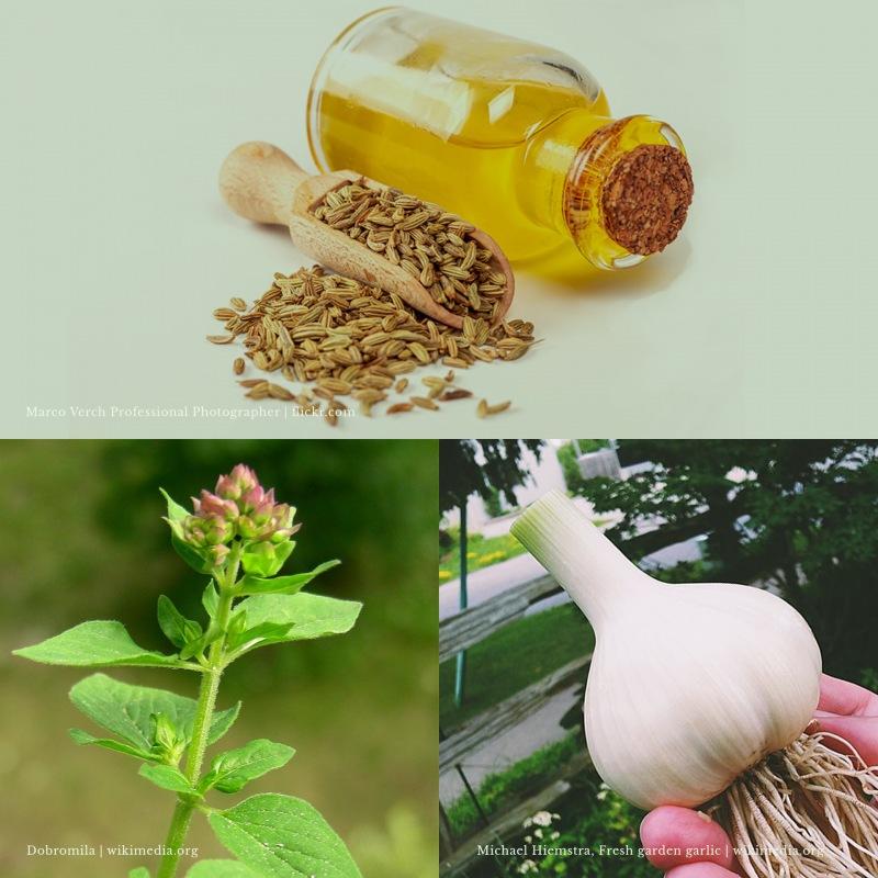 Biopreservantes de alimentos