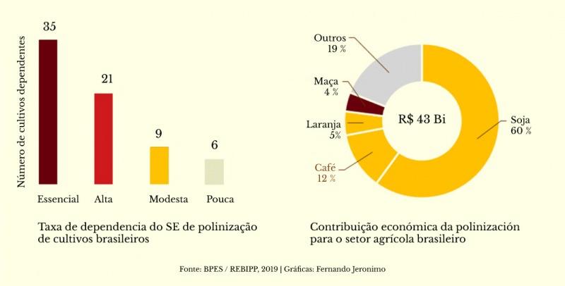 Tasa de dependencia en la polinización de los cultivos brasileños y contribución económica para el sector agrícola