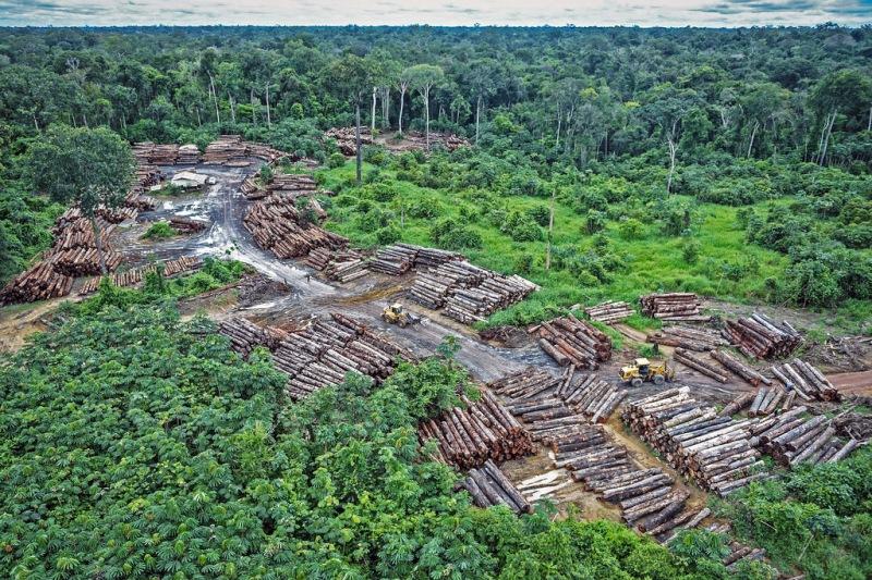 Deforestación en territorio indígena Pirititi en el año 2018