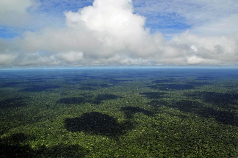 Ríos que vuelan sobre nosotros: una de las glorias de la Amazonía