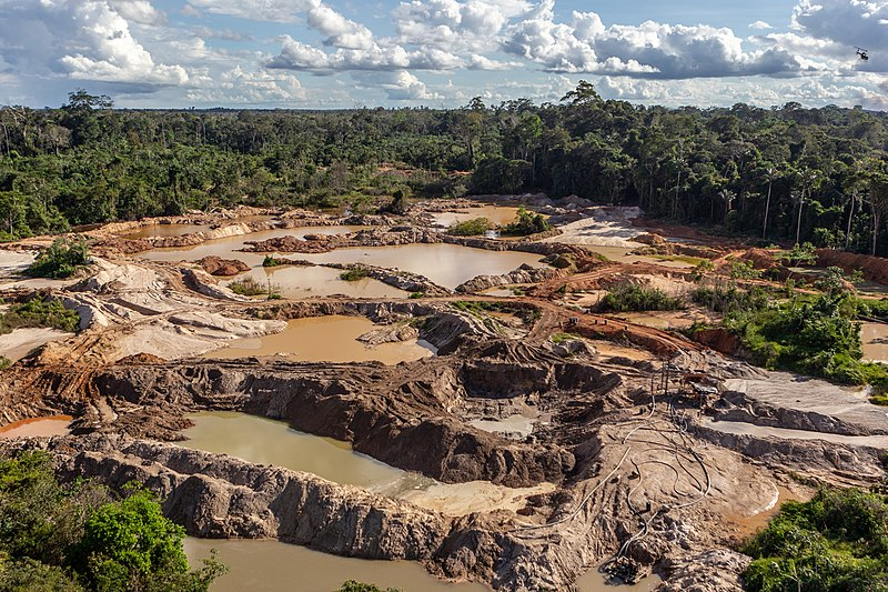 Minería de oro en la Amazonía brasilera