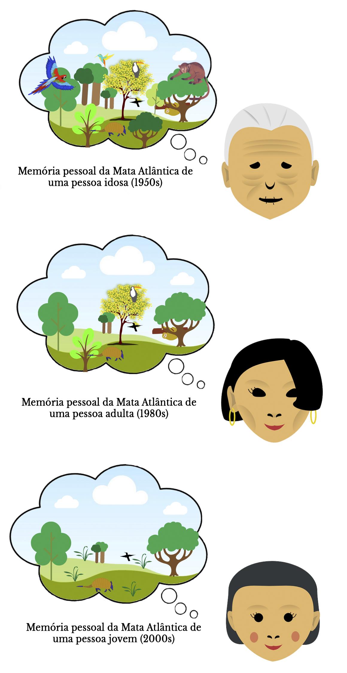 Figura 2 Português