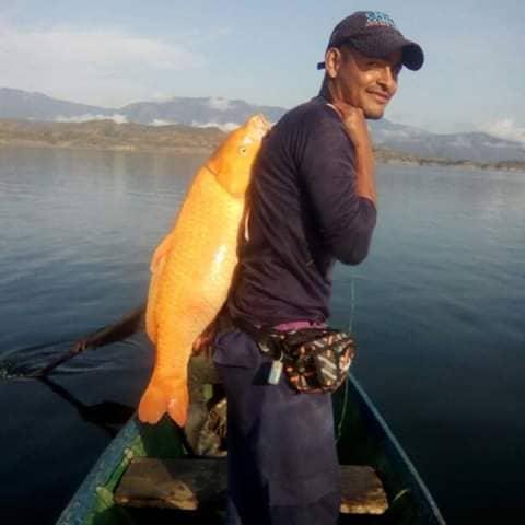 Pescador com peixe
