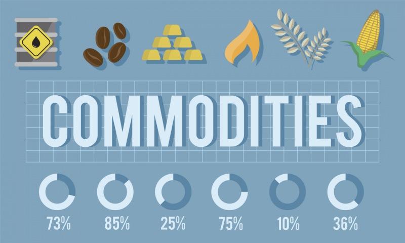 Commodities exportados por países en vía de desarrollo.